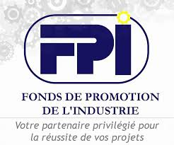 REPUBLIQUE DEMOCRATIQUE DU CONGO  FONDS DE PROMOTION DE L'INDUSTRIE (FPI)